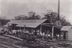 Boranup Timber Mill