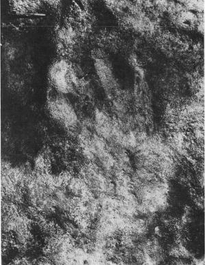 Early Aboriginal art at Kudardup Cave