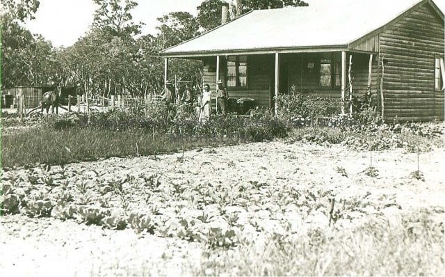 Group Settlement house with immaculate vegetable garden, date unknown.